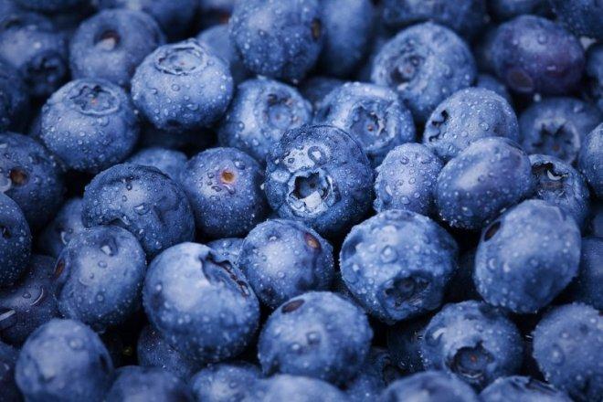 organik-yaban-meyveleri.jpg