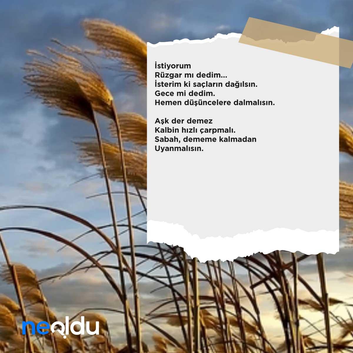 Özdemir Asaf Şiirleri
