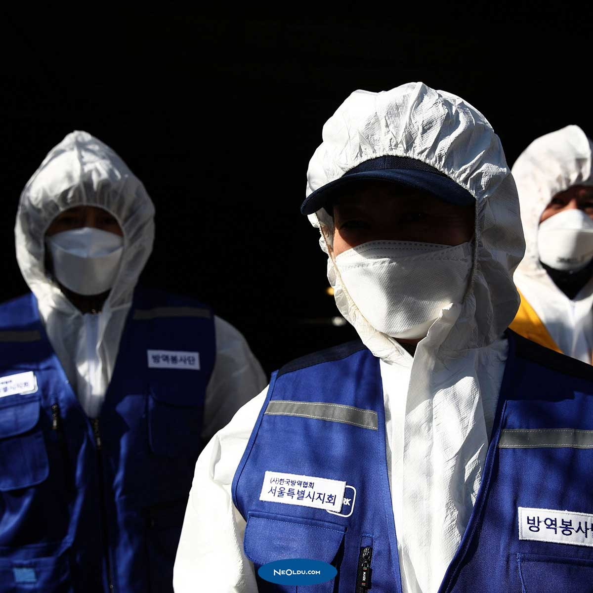Pandemi Epidemi Endemi