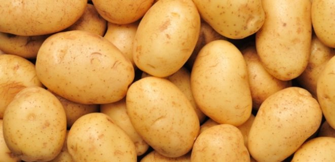 patates-004.jpg