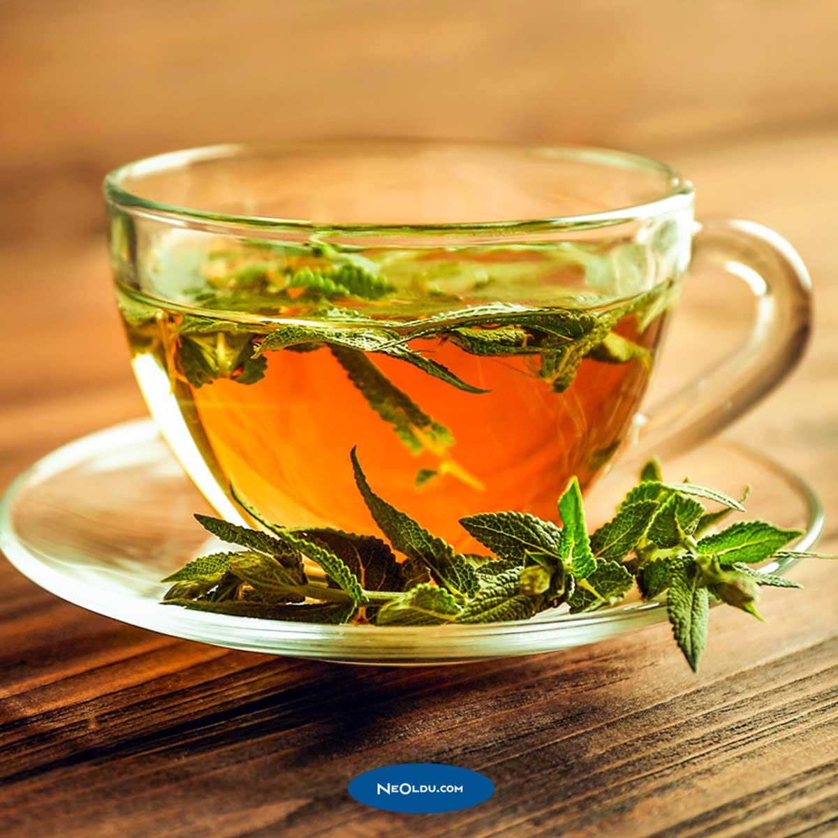 Ramazanı Rahat Geçirmenizi Sağlayacak Bitki Çayları