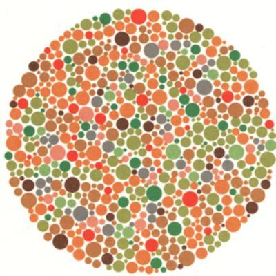 Dunyaniz Ne Kadar Renkli Detayli Renk Korlugu Testleri