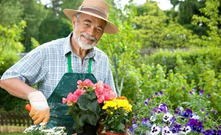 Rüyada Bahçıvan Görmek