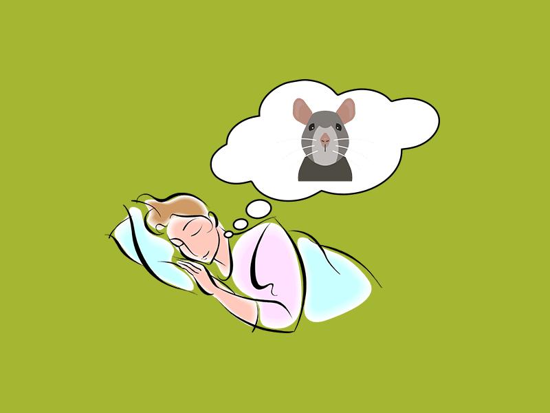 rüyada fare