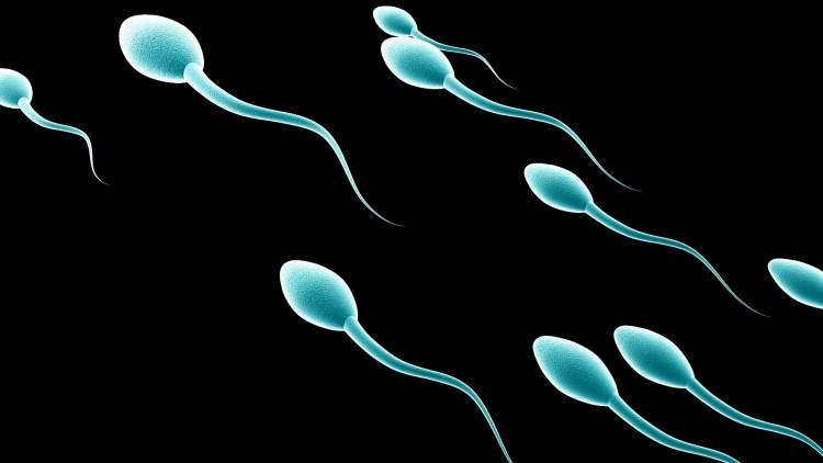 rüyada sperm görmek