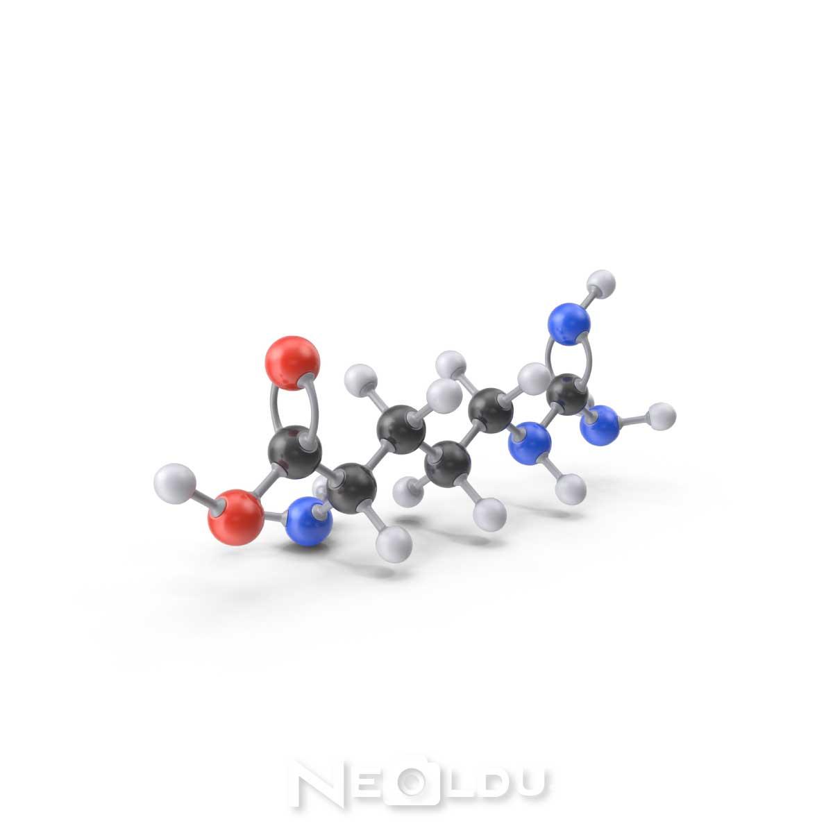 saca-protein-takviyesi-002.jpg