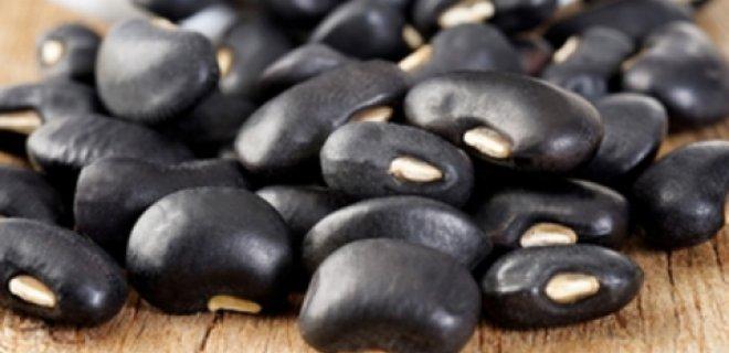 siyah fasulye