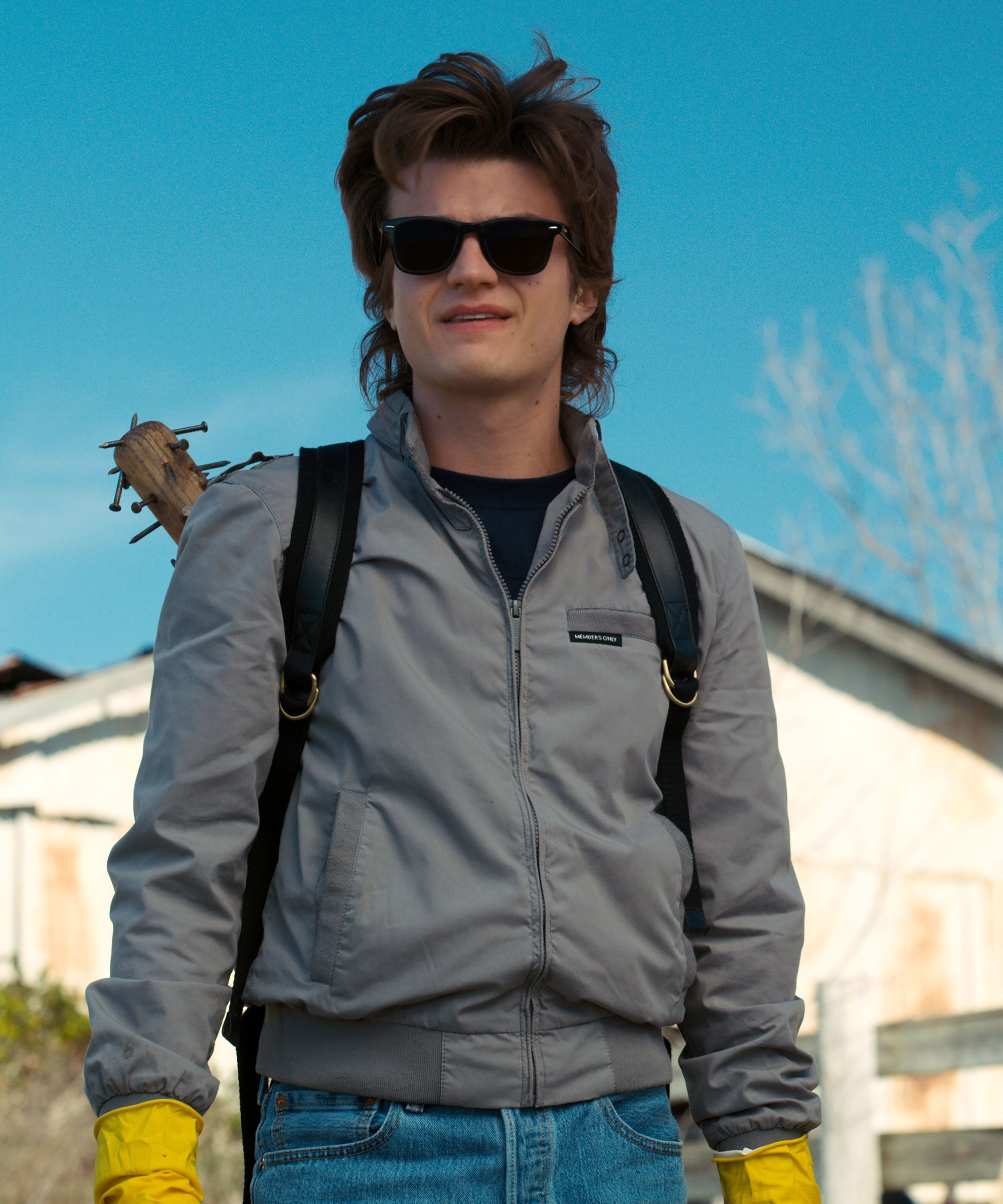 steve-harrington.jpg