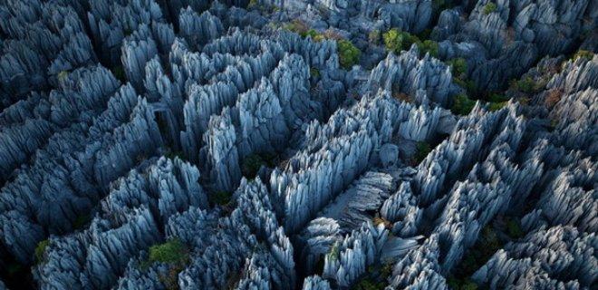 taş ormanı