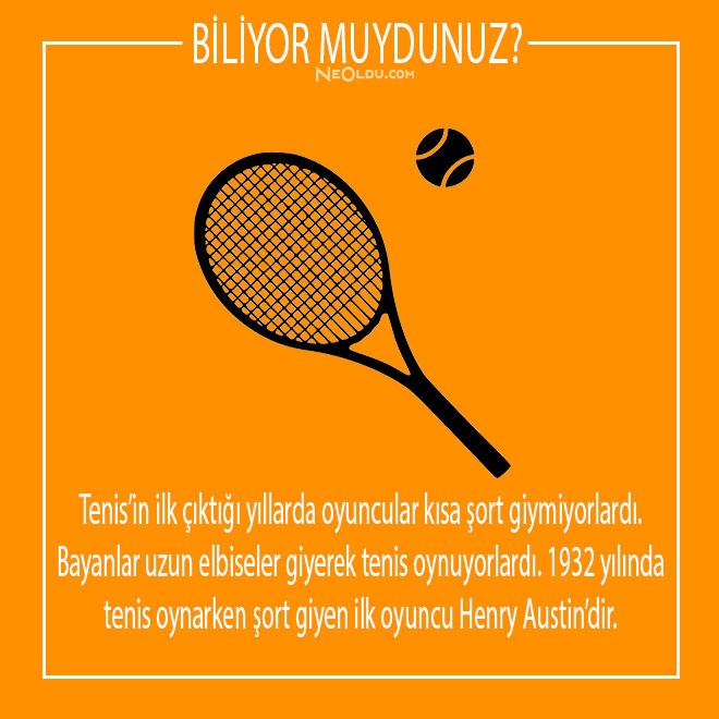 tenis hakkında bilgi