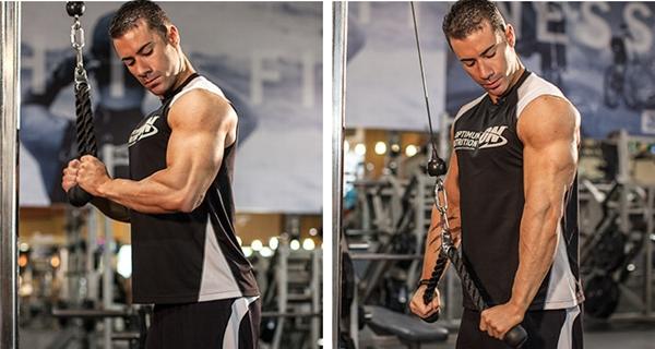 triceps-001.jpg