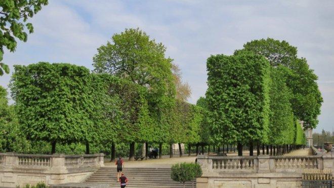 tuileries-bahcesi-paris.jpg