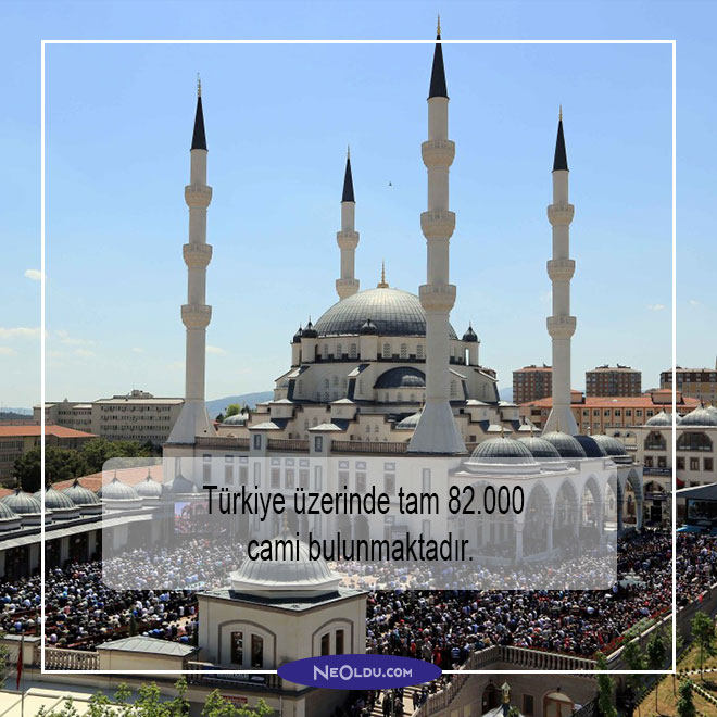 Türkiye hakkında ilginç bilgiler