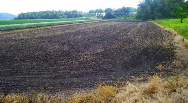 ukrayna-verimli-topraklar.jpg