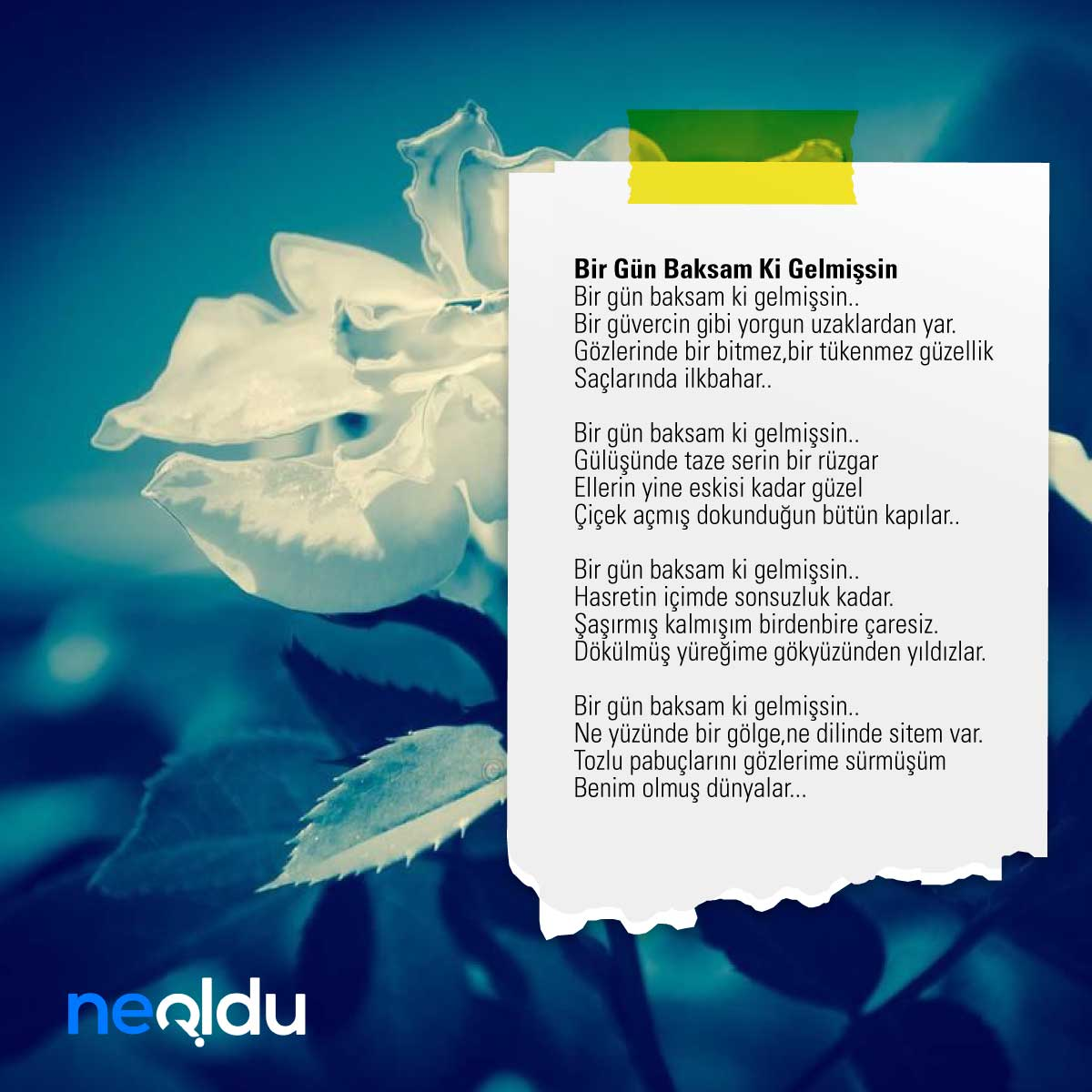 Yavuz Bülent Bakiler Şiirleri