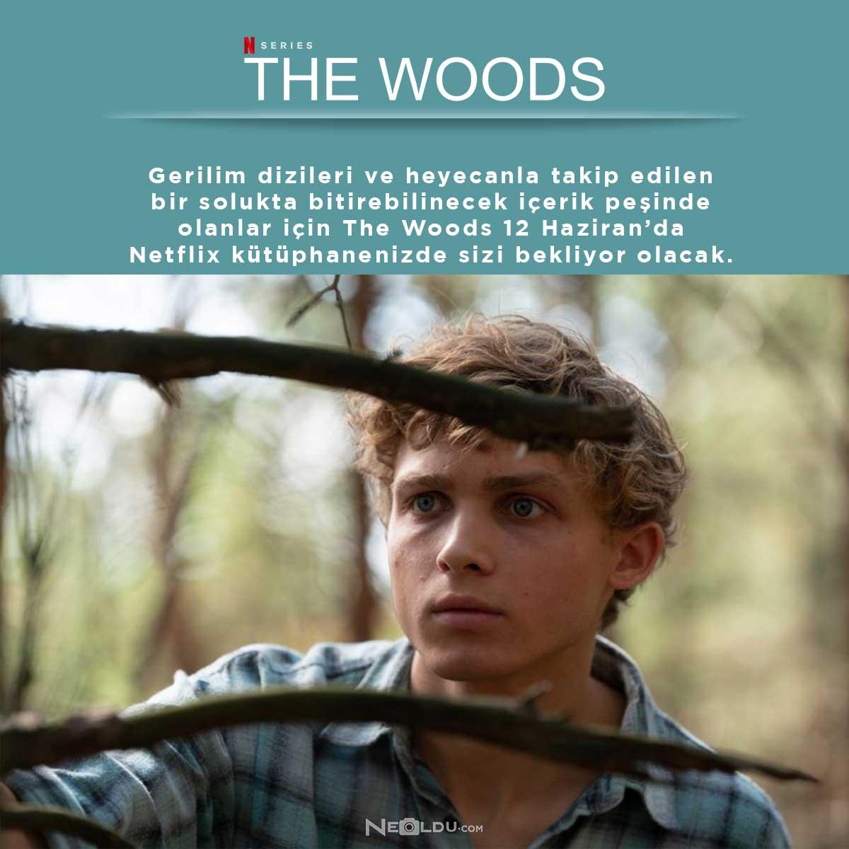 yeni-netflix-dizisi-the-woods.jpg