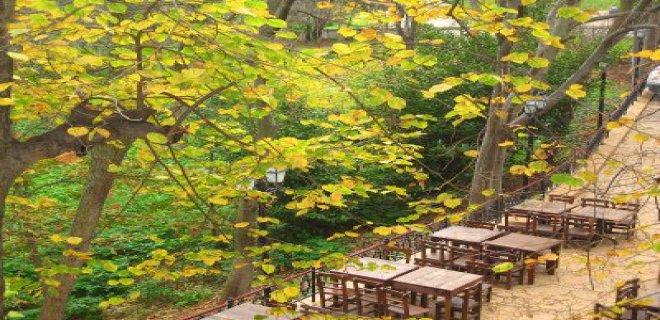 yildiz-parki-kir-kahvesi-002.jpg
