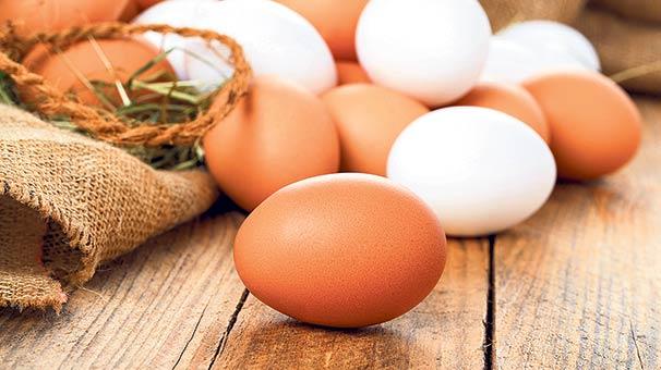 yumurta-001.Jpeg