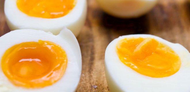 yumurta-002.Jpeg
