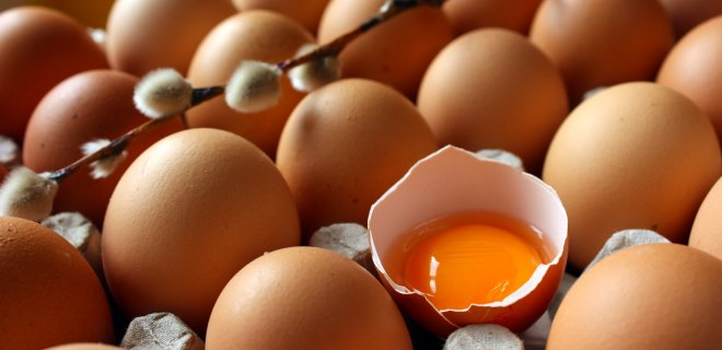 yumurta-008.jpg