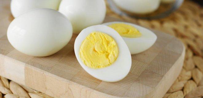 yumurta-019.jpg