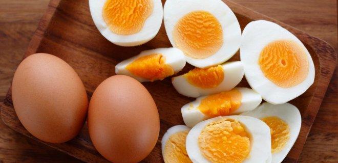 yumurta-027.jpg
