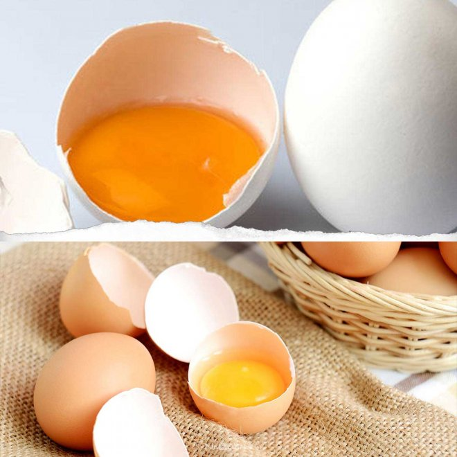 yumurta-sarisi-004.jpg