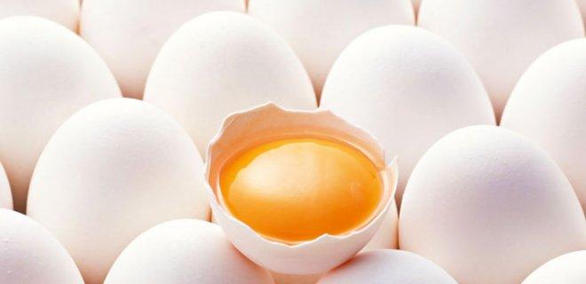 yumurta-sarisi.jpg