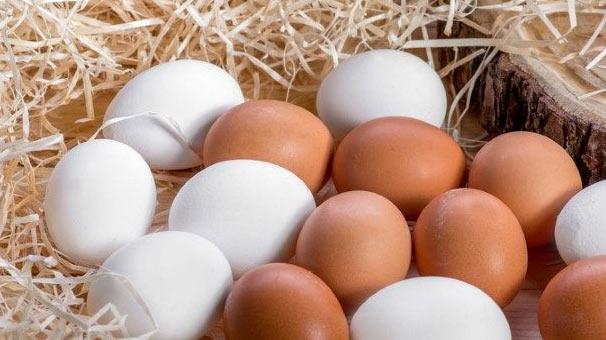 yumurta2.Jpeg