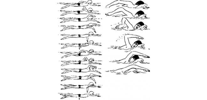 yuzme-teknikleri-001.png